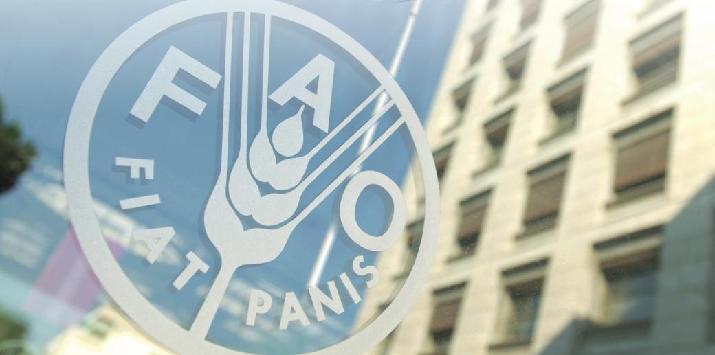 Birleşmiş Milletler Gıda ve Tarım Örgütü (FAO)
