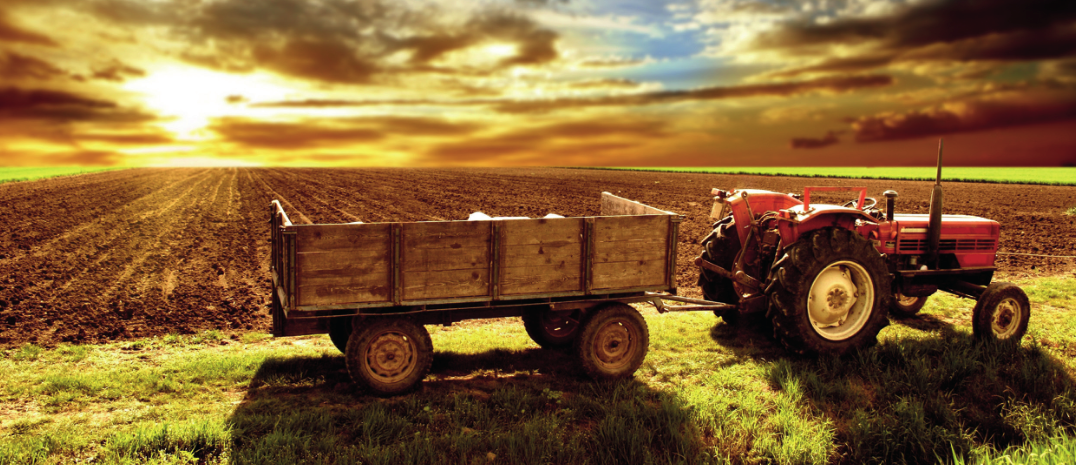 Tarım Destekleme ve Yönlendirme Kurulu'ndan Bakliyata %100 Destek
